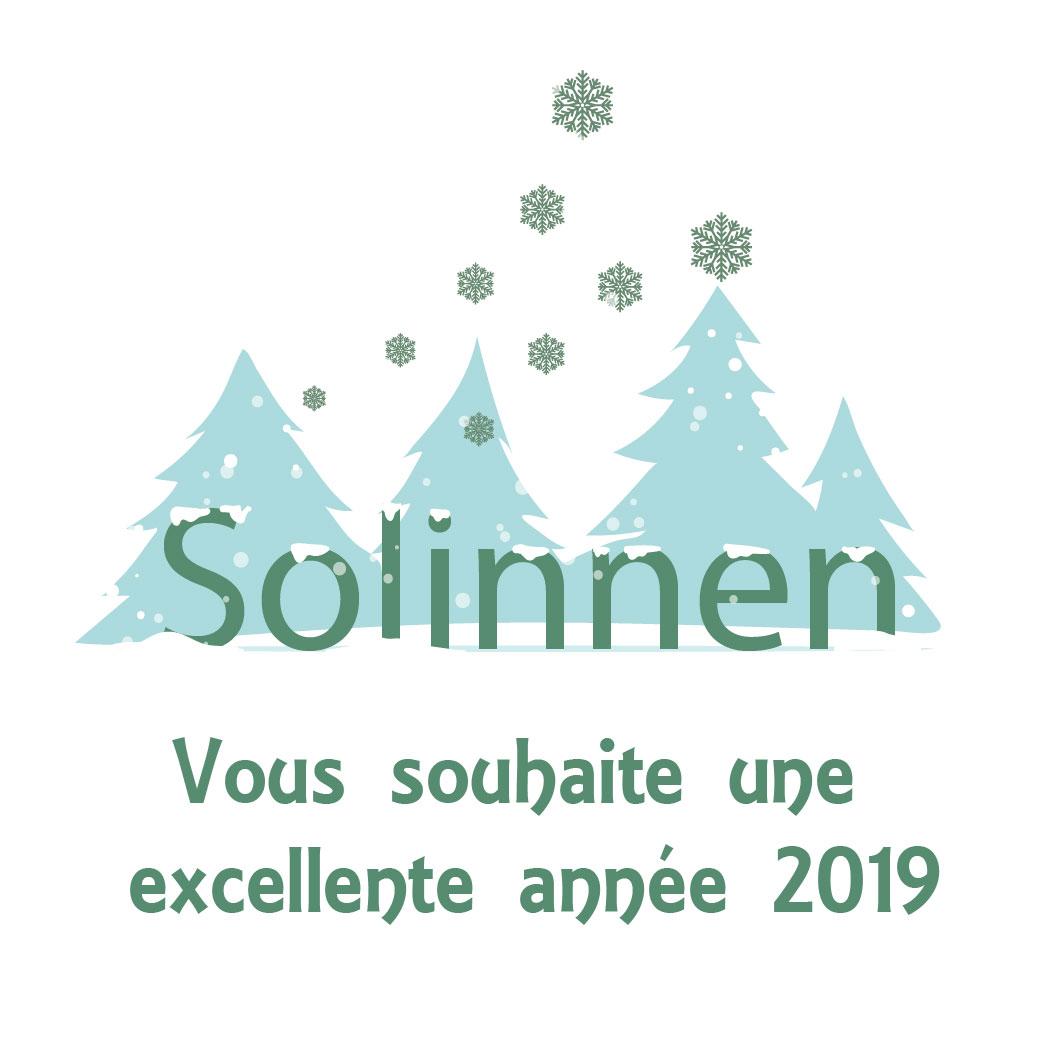 Solinnen vous souhaite une excellente année 2019
